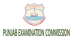 Punjab Examination Commission PEC Lahore Board 5th Class Result 2018 Online Check By Roll Number Name